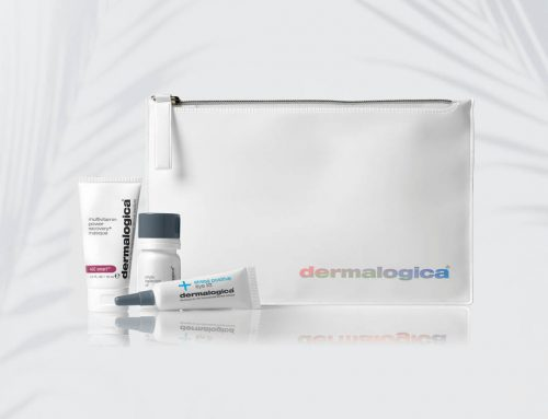 Our Dermalogica Mini's Are Back